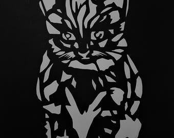 Kitten, Cat, Pets, Animals,