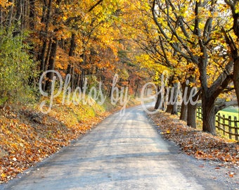 "Autumn Road - 16""X20"" Photo"