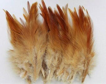 set of 50 mixed beige feathers 10-15cm