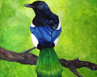 Magpie on Branch *Original* Acrylic Painting