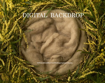 Digital Backdrop Wattle floral wreath Background newborn Photography prop download for girl boy overlay green yellow High Res jpg file#20