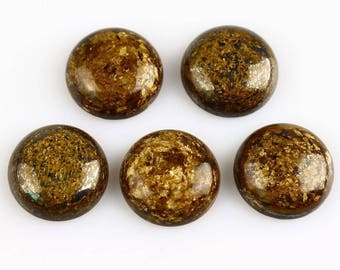 16 mm a set of 2 cabochon bronzite within 15 days