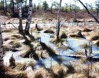 Photo manipulation print:  Spring in marshlands