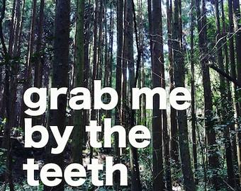 Grab Me By The Teeth: Book of Poetry