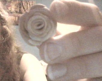 Clay Rose