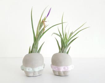 Doll Head Robbers air plant planter