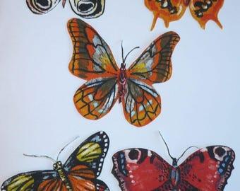 Série de magnets papillons multicolores