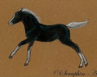 Pinto Foal Original Pastel Painting
