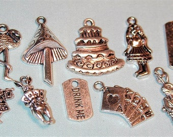 Alice in Wonderland Inspired Charm Collection  10pc  Silvertone C234