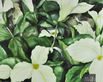Vintage Original 20th C Watercolor Watercolour Painting Trillium Flower Impressionism Realism Framed Art
