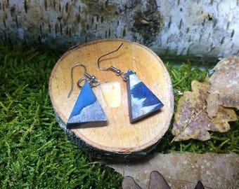 Earrings, resin earrings wood earrings wood earrings, resin, epoxy resin earrings