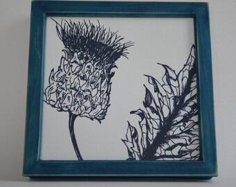 Cardoon Botanical Print, Dyed Softwood Frame