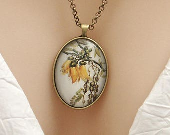New Zealand Kowhai flower, vintage art print, large oval Picture Pendant, 40x30mm, glass dome pendant, cameo