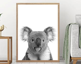 Koala Print, Australian Baby Animal, Nursery Wall Art, Printable Poster, Peekaboo Animals, Koala Bear, Digital Download, Nursery Wall Decor