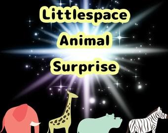 Littlespace A animal surprise box!