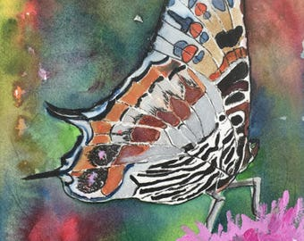 Butterfly Original mixed media painting