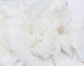 Stunningly White Soft Cormo Wool From Coated Sheep - Washed - Natural Wool - White - Undyed - Fine and Soft - Art Fiber - 2.8 Ounces