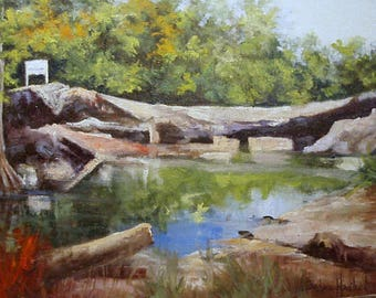 Plein Air McKinney Falls, near Austin,Barbara Haviland,