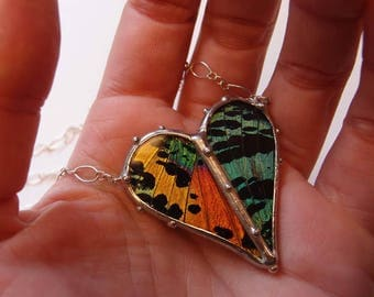 Real Sunset Moth Necklace - Romantic Heart Necklace