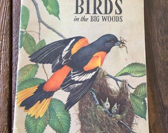 1940s Bird field guide vintage midcentury book mcm encyclopedia bird illustrations