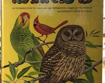The Giant Golden Book of Birds by Robert Porter Allen, Illustrated by Arthur Singer, 1962.