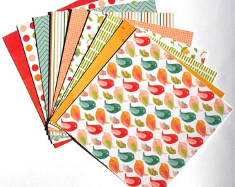 Color Crush - 6x6 American Crafts Paper Pack