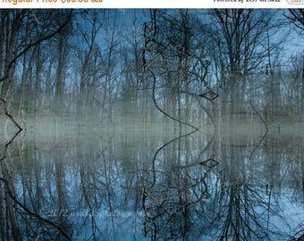 "50% OFF SALE Nature Photograph, Landscape Photograph, Trees, Lake, Surreal Blue Photograph - 8x10 inch Print - ""Deep Cool Blue"""