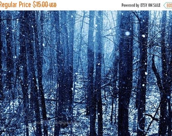 50% OFF SALE Frozen Landscape, Winter Photography, Blue Photo, Nature Picture, Christmas Home Decor, Blue, Snow, Woodland - 5x7 inch Print,