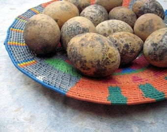 Egg Gourds Baker's Dozen Organically Grown Primitive Prim Bowl Filler Nature Craft Supply Decoration Easter Egg Rustic Decor Midnightcoiler
