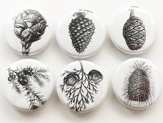 Pinecones fridge magnets set, badges, coasters, conifers, forest, black and white, party favors, stocking stuffers, 1 inch, minimalist gift