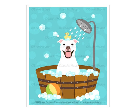 345D - Pit Bull Print - White Pitbull Taking Bath Wall Art - Staffordshire Bull Terrier Print - Pitbull Drawing - American Pit Bull Drawing