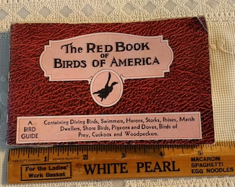 1931 Birds of America Book The Red Book of Bird of America Frank G Ashbrook Paul Moller Whitman Publishing