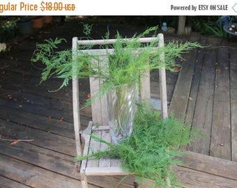 Save25% Plumosus Fern-18 stems of Preserved Soft and whispy wedding ferns-Plumosa fern-green ferns-floral decor