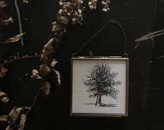 Original Framed Tree #3 Pen and Ink Drawing