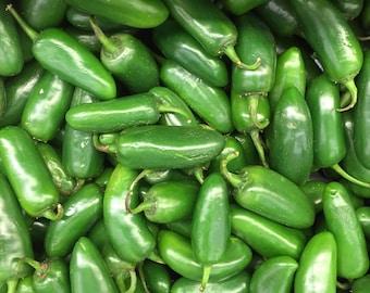 Jalapeno Pepper Seeds, Pepper Seeds, Hot Pepper Seeds, Chili Pepper Seeds, Organic Pepper Seeds, Jalapeno Seeds