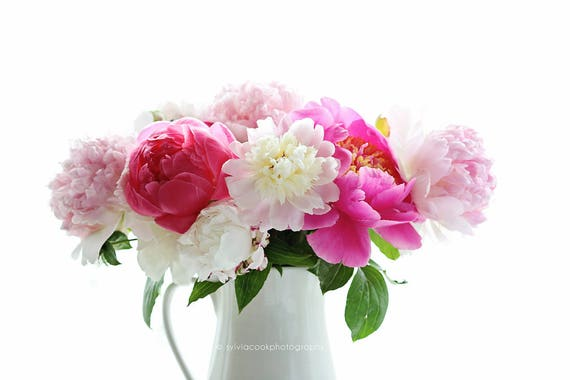 Multi colored peonies, pink peonies, spring home decor, floral photography, pastel photograph, pink,flowers,Shabby chic decor
