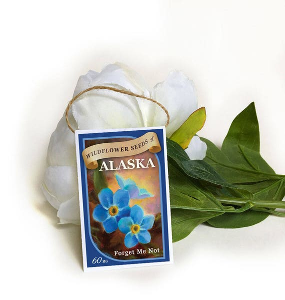 10 Forget Me Not Seed Packet Favours By Wedding In A: Forget-me-not, Blue Flower Seeds-forget Me Not Seeds