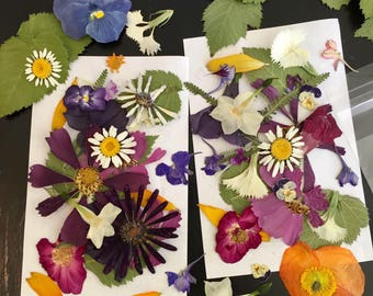Pressed Flowers, Real Dried Flowers, Decorations, Wedding Decor, Invitations, Decoupage, Resin Jewelry, Craft Supply, Scrapbook, Paper Craft