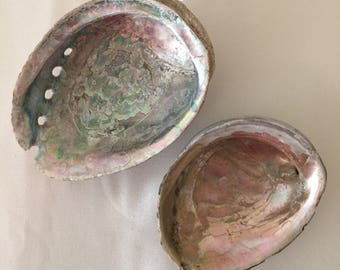 Pair of Abalone Shells