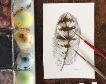 Red-tailed Hawk feather - Original Watercolour