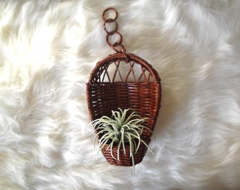 Hanging Wicker Planter Basket, Succulent Holder, Boho Wicker Plant Hanger, Basket Wall Decor, Rattan Plant Pot