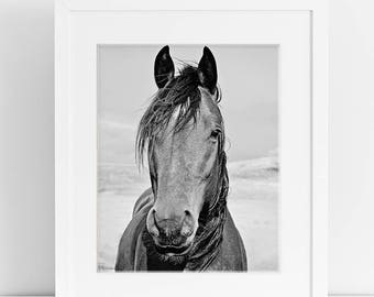 Black and White Horse Photograph, Physical Print, Vertical Equine Print
