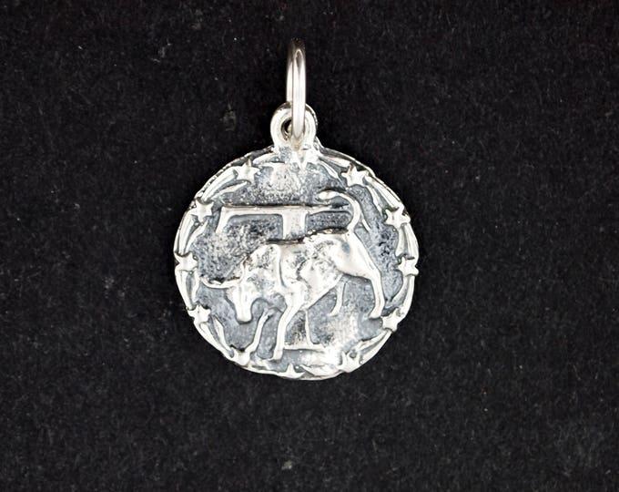 Zodiac Medallion Taurus in Sterling Silver