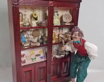 Dolls House Miniature Mahogany style Museum / Collector's Collection