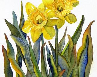DAFFODIL DUO - Original  Watercolor Painting
