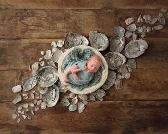 "Digital Backdrop- ""Colors of the Sea""- Mermaid Newborn Photo Prop"