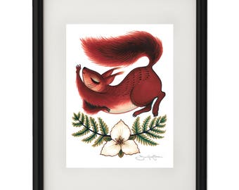 Squirrel Stretch - Archival Giclee Print