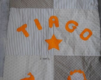 Personalized baby animal theme for Tiago blanket!