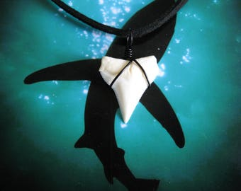 """Shark Tooth Necklace, Modern Day White Shark tooth, 20"""" Suede leather cord, Black wire wrapped"""