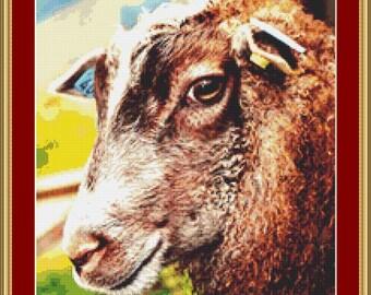 Face Of A Sheep Cross Stitch Pattern